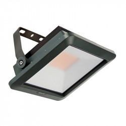 Projecteur Floodlight Philips LED 50W